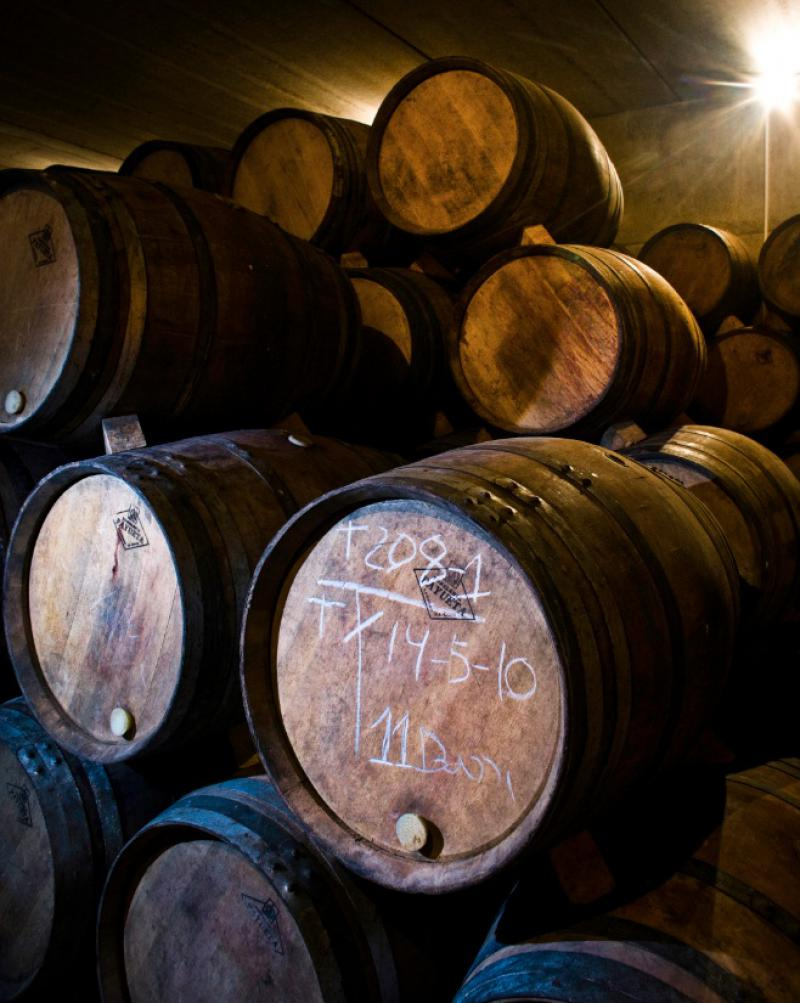 Wines in barrel at Bodegas Santalba