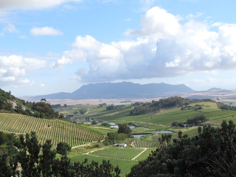 Annex Kloof view of Swartland