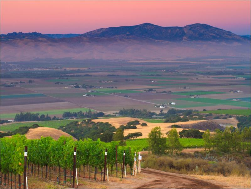 Hahn SLH Estate - view over the Salinas Valley